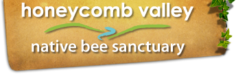 HCV - Native Bee Sanctuary